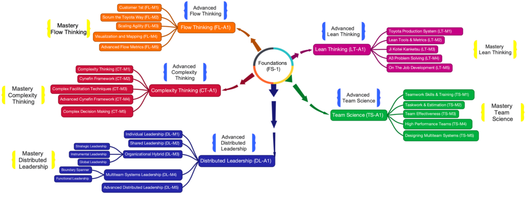 Flow System Masters Curriculum